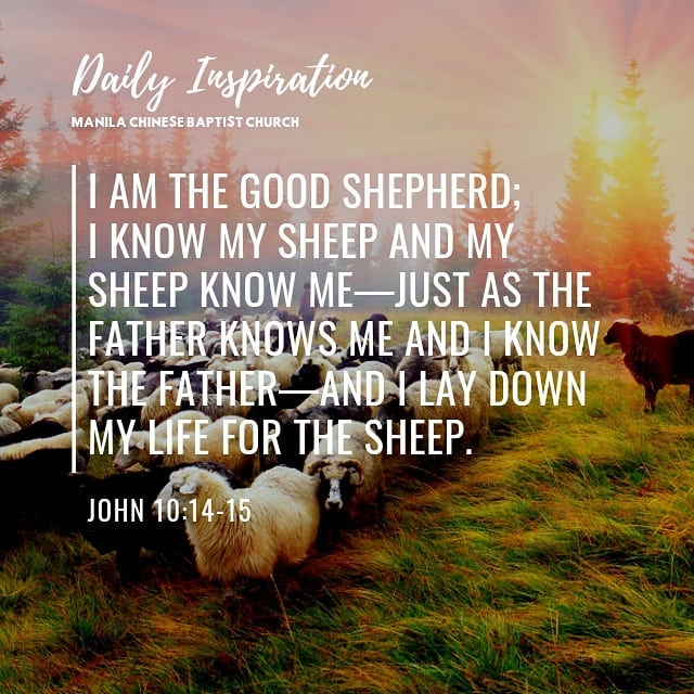 I am the good shepherd; I know my sheep and my sheep know me—just as the Father …