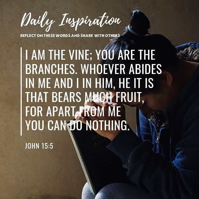 I am the vine; you are the branches. Whoever abides in me and I in him, he it is…