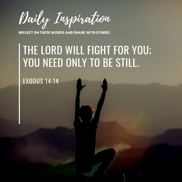 The Lord will fight for you; you need only to be still. ~ Exodus 14:14…