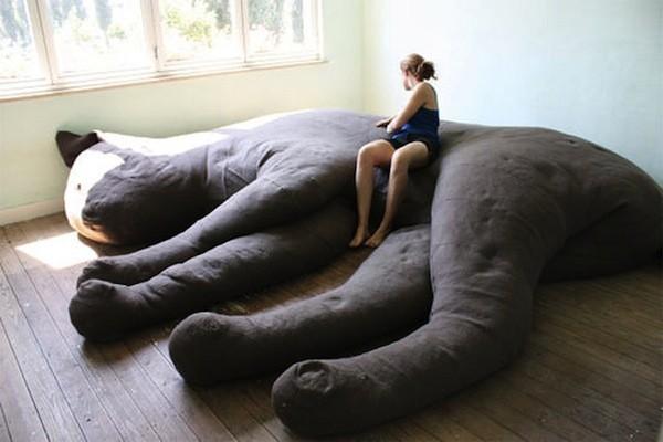 cat lover sofa