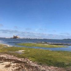 Arroyo y Castejón convierten las playas de Cartagena en lugares inhóspitos y sucios