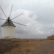 MC solicita el entorno de protección para los molinos del Campo de Cartagena