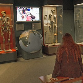 EXHIBITS_HumanOriginsStudentWatching
