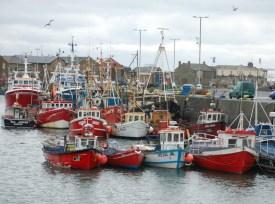 howth-fishing-boats-1