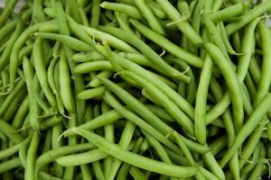 McCollum CSA: Beans