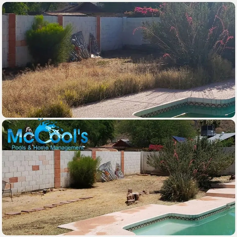 Landscaping Yard Clean Up Vistancia