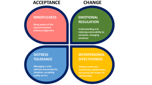 Dbt skills Modules that include acceptance and change with mindfulness, emotional regulation, distress tolerance and interpersonal effectiveness. DBT can help with family therapy in rockville, md too