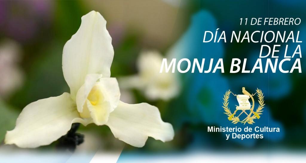 DÍA NACIONAL DE LA MONJA BLANCA