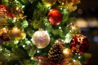 Christmas_photo6nb07.jpg