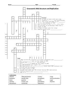 CROSSWORD: DNA STRUCTURE AND REPLICATION