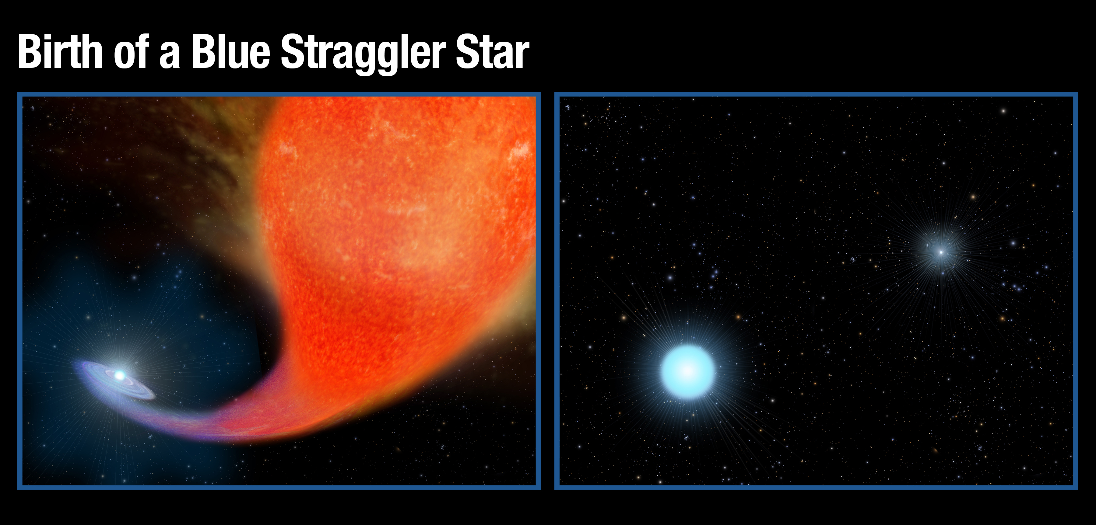 Left: A normal star in a binary system gravitationally pulls in matter from an aging companion star that has swelled to a bloated red giant that has expanded to a few hundred times of its original size. Right: After a couple hundred million years the red giant star has burned out and collapsed to the white dwarf that shines intensely in ultraviolet wavelengths. The companion star has bulked up on the hydrogen siphoned off of the red giant star to become much hotter, brighter and bluer than it was previously. Credit: NASA/ESA, A. Feild (STScI)