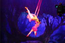circo da china 1