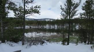 Mountain views across Mud Lake.