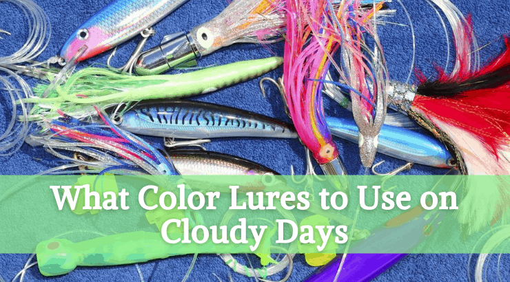 What Color Lures to Use on Cloudy Days