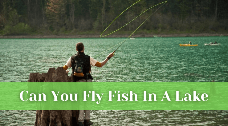 Can You Fly Fish In A Lake
