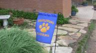 tanglewood tigers sign