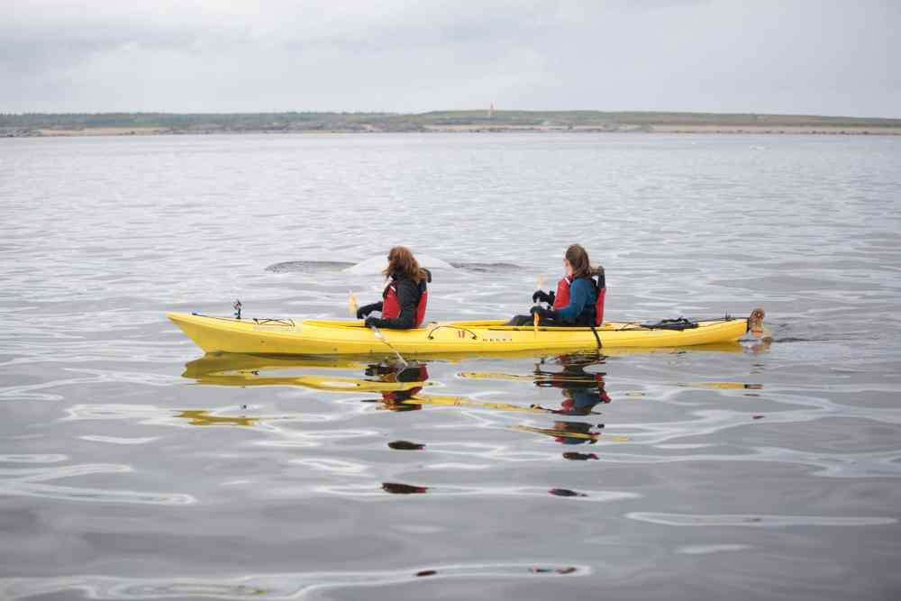 Kayak Churchill Manitoba Canada
