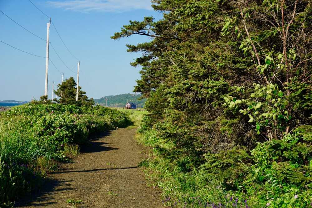 Sentier Domaine Floravie Le Bic Domaine Floravie