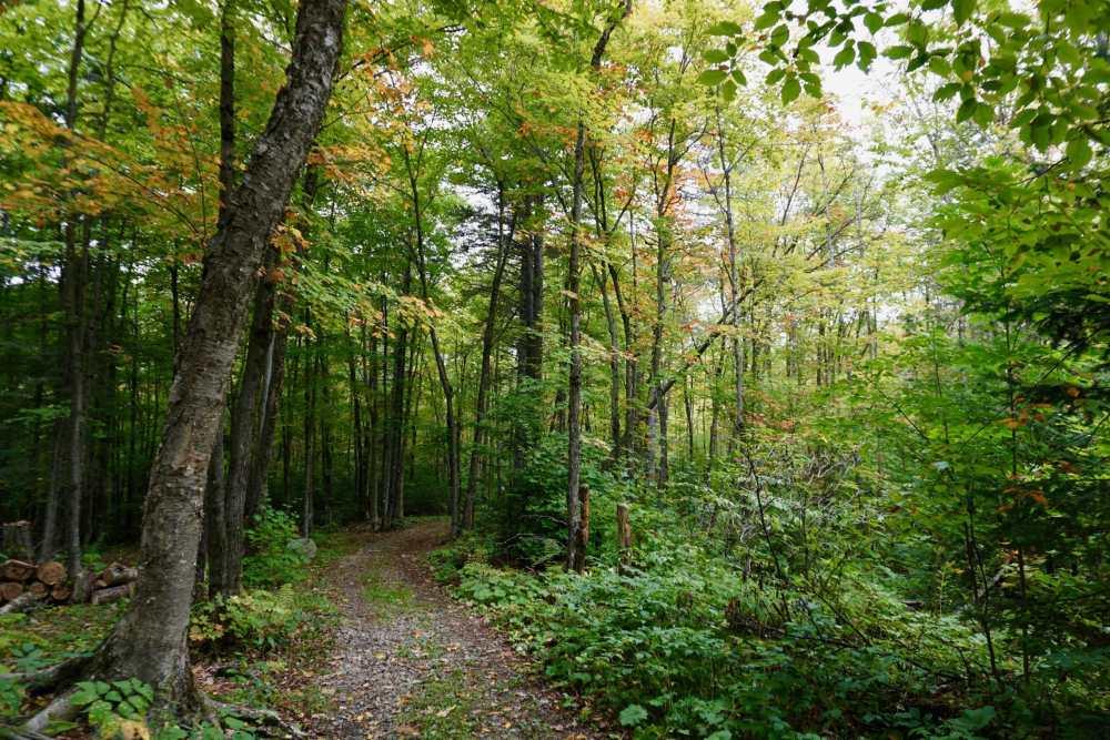 Sentier des mineurs en Chaudière-Appalaches Quebec