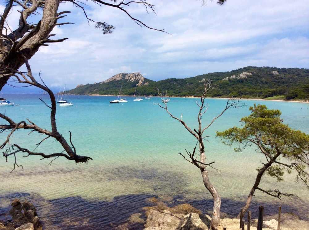 L'eau turquoise de l'île de Porquerolles, Provence, France