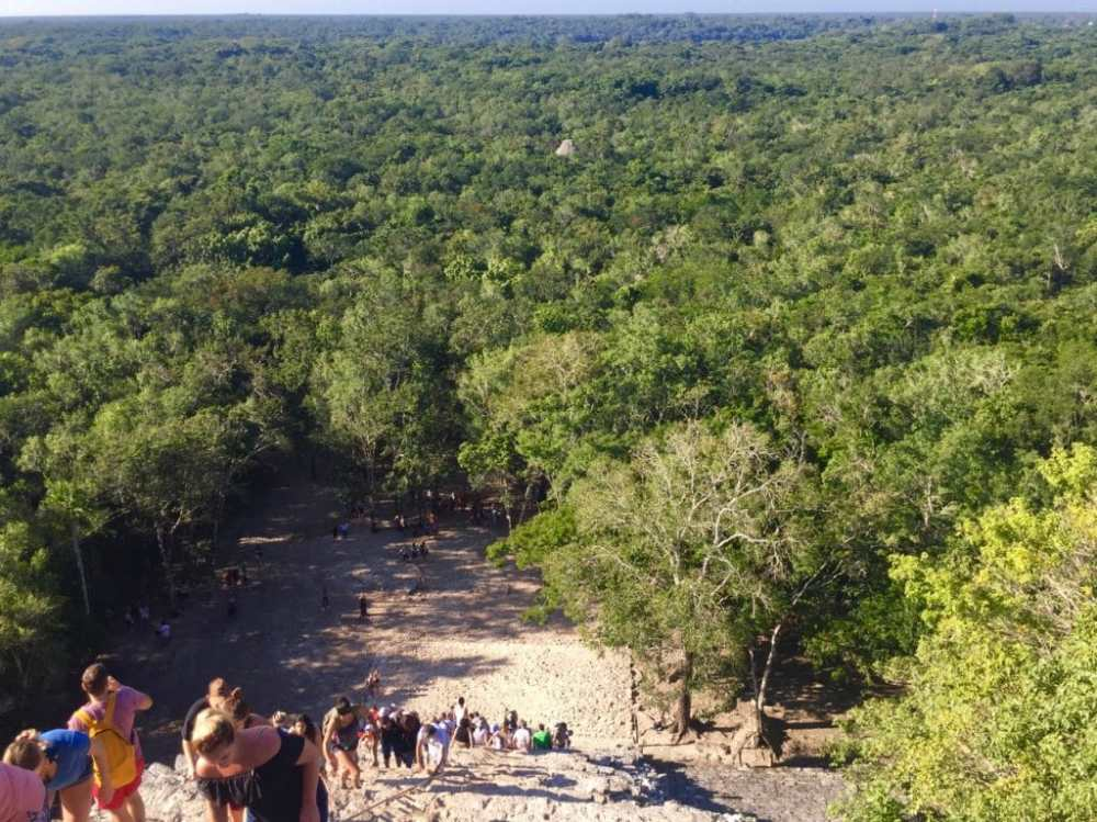 Vue depuis le haut du temple pyramidal des ruines de Coba Mexique