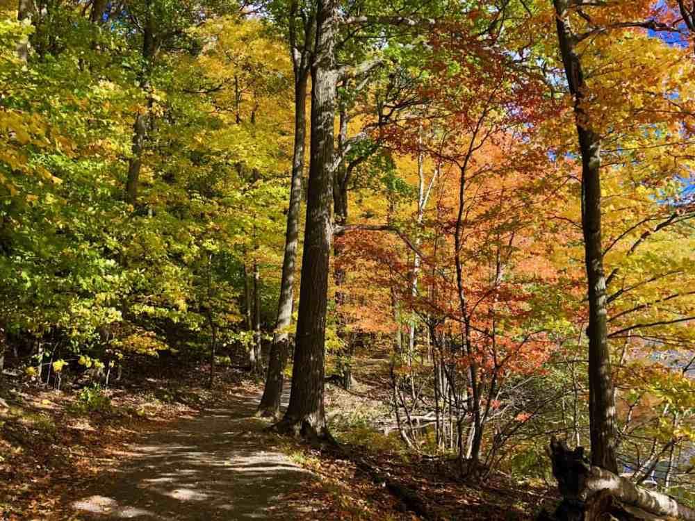 Randonnée pédestre en automne au Québec