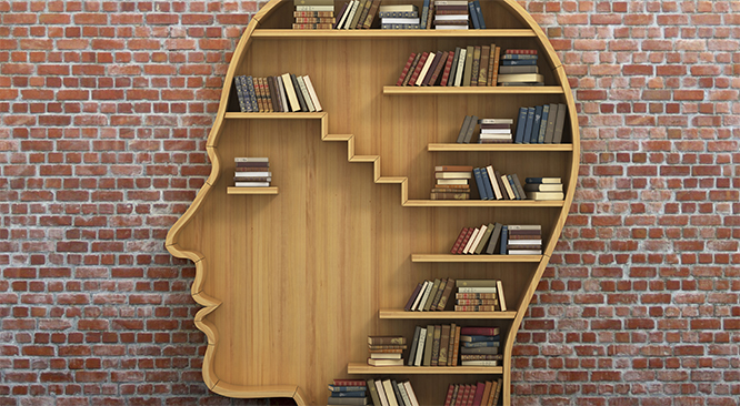 bookshelf shaped like a human head with books inside