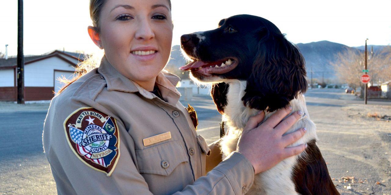 Jake the Drug Dog crucial to law enforcement effort
