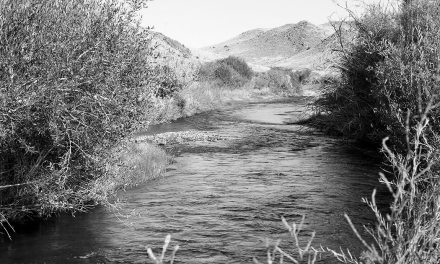 Nevada receives donation to establish new state park along Walker River