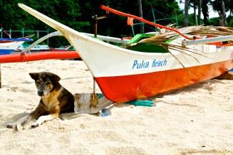 Puka Beach up north.