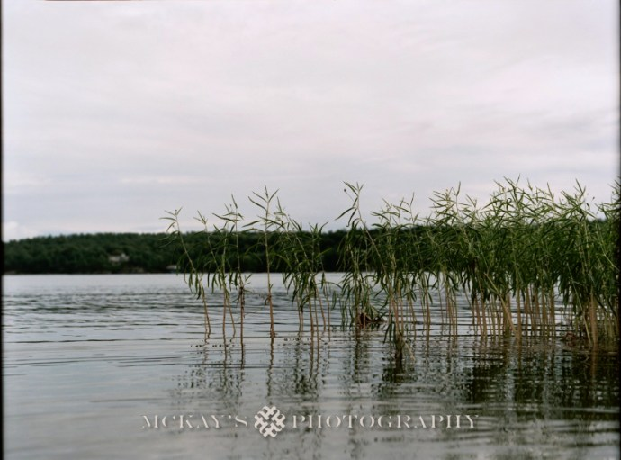 Mamiya RZ67 film photography in the thousand Islands region of NY