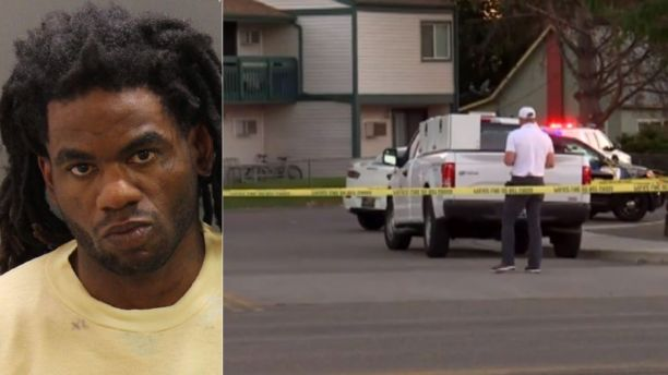 Mass stabbing at apartment complex leaves 9 injured, suspect in custody, police say