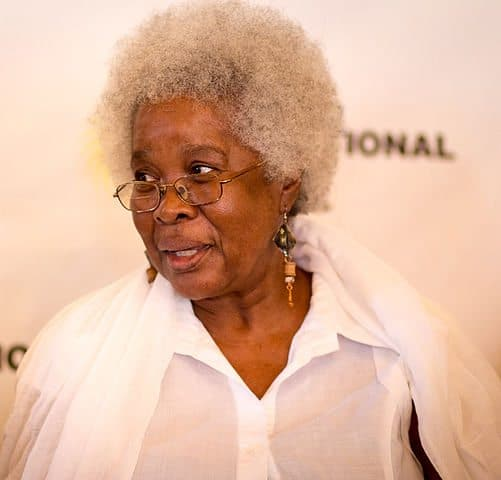 Jamaican Author Erna Brodber gets US$165,000 Grant