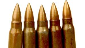 Assault Rifle Rounds Seized in Olympic Gardens