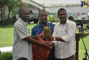 Farmers Receive Pineapple Suckers