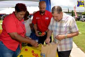 Small Dairy Farmers Encouraged to Prepare for Revival of Sector