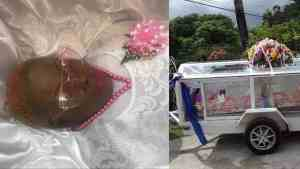 ENTERTAINER DOG RICE LAID TO REST