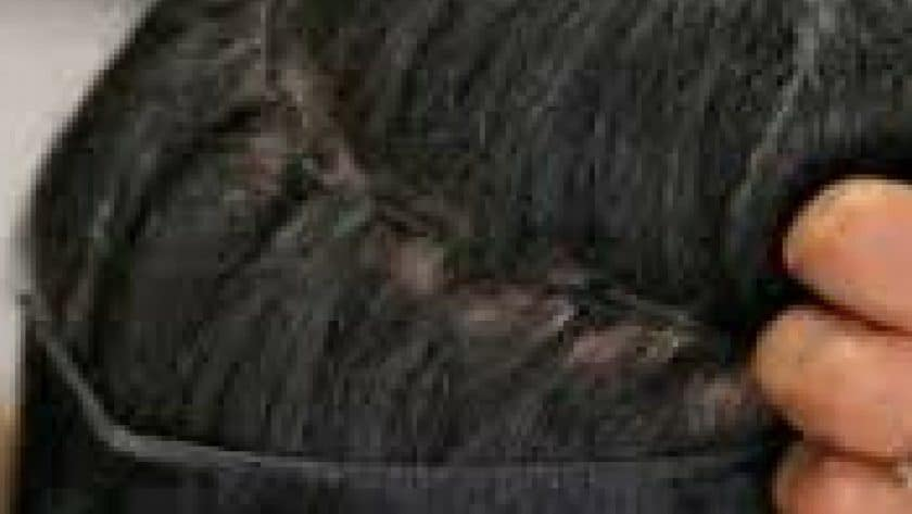 Guyanese Woman Caught With Cocaine in Hair
