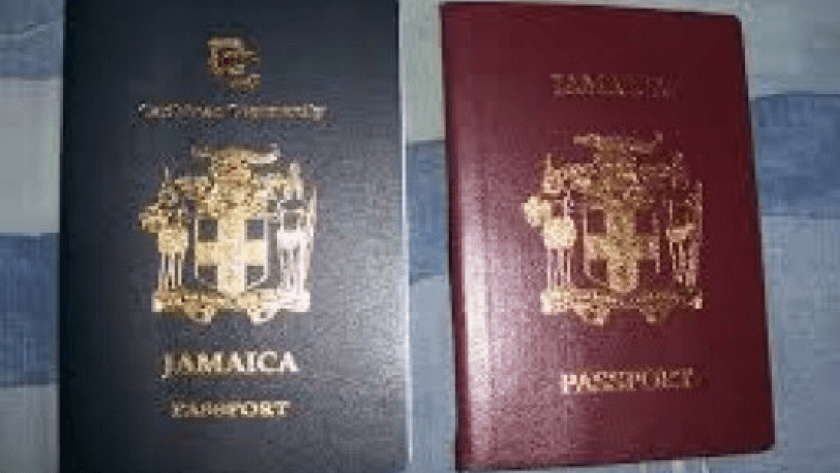 FINED FOR FAKE PASSPORT