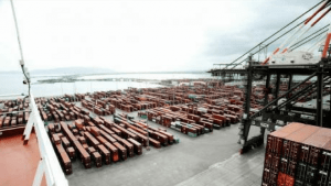 Containers Pile-Up at Kingston Freeport Terminal