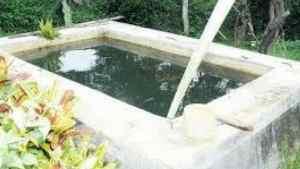 Elderly Alexandria St Ann Woman Drowned in Family Tank