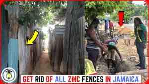 Tear down all ZINC FENCES in JAMAICA