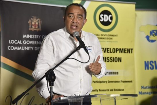 Health Ministry To Step Up Mosquito Eradication Activities In Portland