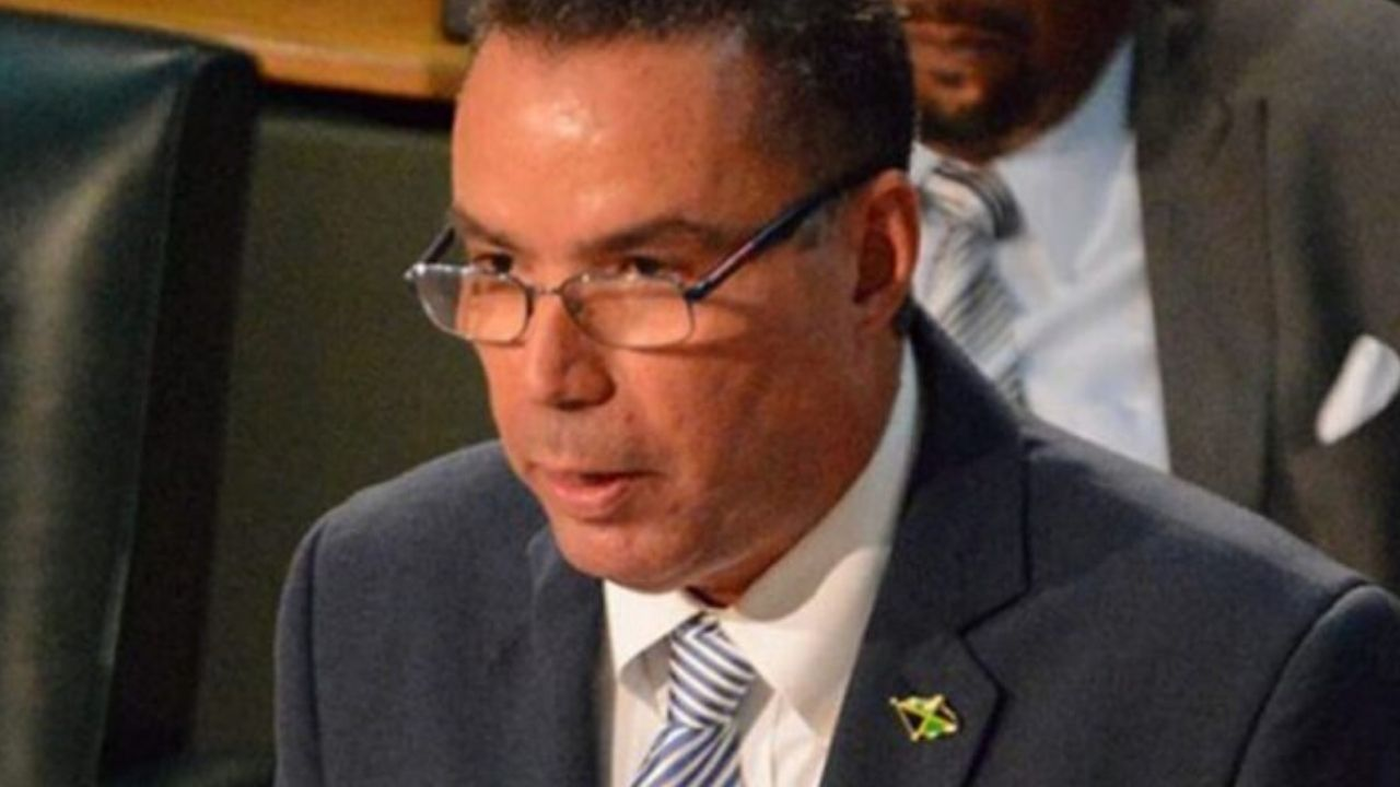 Vaz Hits Back At Political Activists
