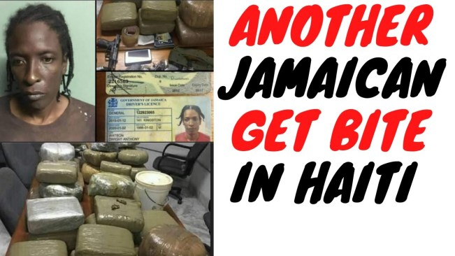 Jamaican Gets Caught With KGs **NOT T0NNES** Of Ganja And Coke In Haiti Bust