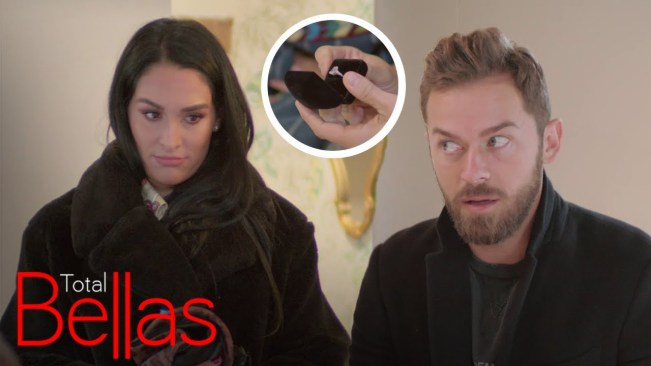 Nikki Bella almost ruined her own engagement proposal
