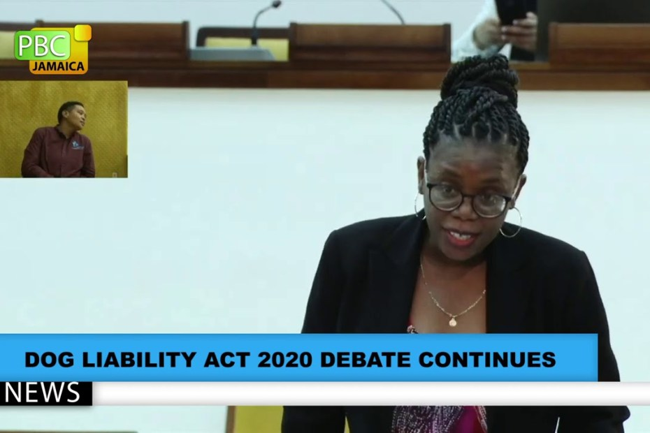 Dog Liability Act 2020 Debate Continues