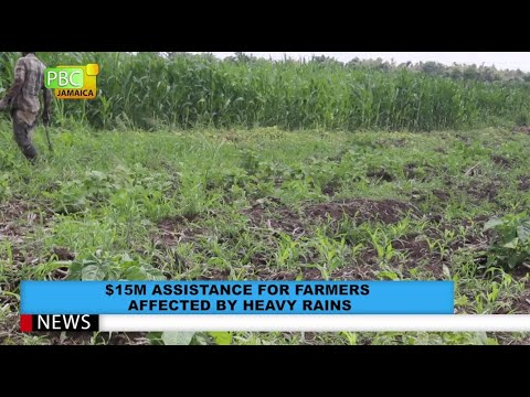 $15M Assistance For Farmers Affected By Heavy Rains