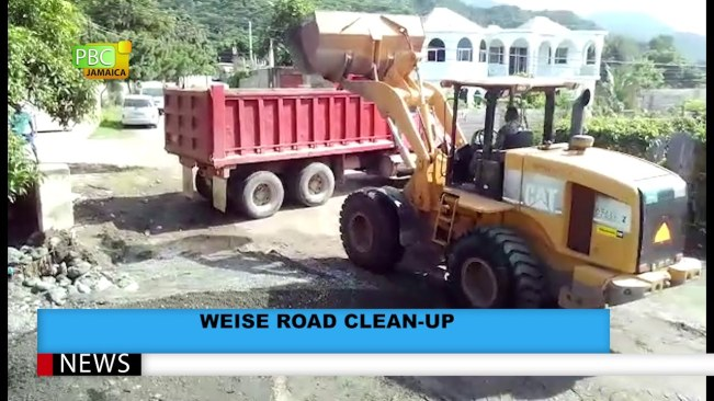 Weise Road Clean Up