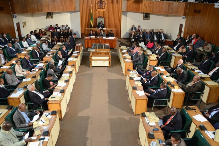 LIVE NOW: Sitting of the House of Representatives – January 19, 2021